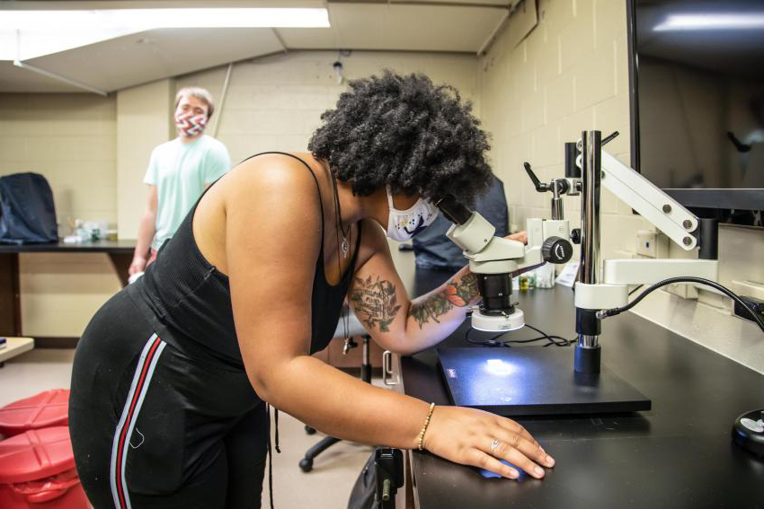 Arcadia University student Alexis Testa looks through a microscope
